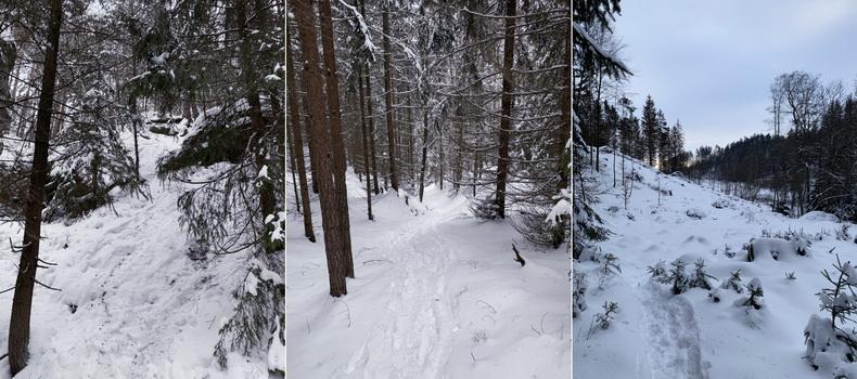 Adrenalinová zkratka, na které jsme si užili pravých zimních radovánek i bez pomocníků pro alpské disciplíny