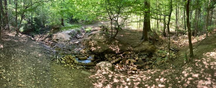 Babský potok uprostřed stoupání na stejnojmenný kopec