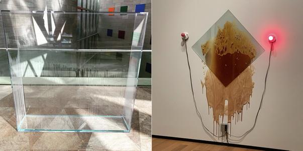 Východní budova muzea umění byla zaměřena na modernu, někdy hodně bizární. Vlevo již zmíněná Condensation Wall. Co je vpravo, to nechám na každém z vás...