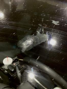 Dárek od jednoho obyvatele Ohia v podobě skleněné tarantule. Na skle už tedy nemáme jen mouchy a výkaly...
