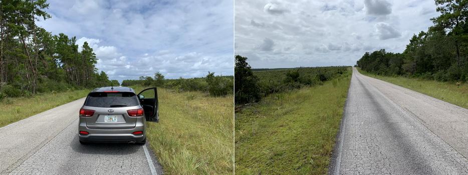 Kromě nás, kolem ani živáčka... jen takřka nekonečná rovná silnice a plno zeleně